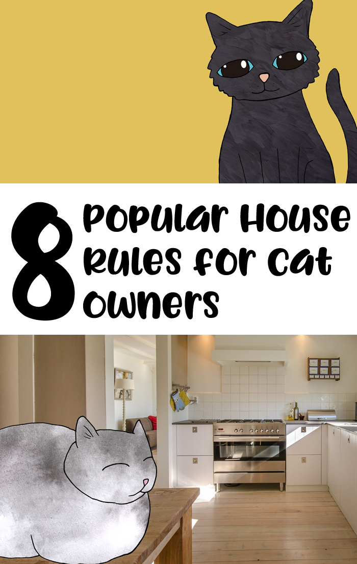 rules for cat owners