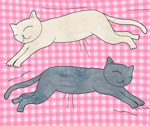 cute cats napping illustration