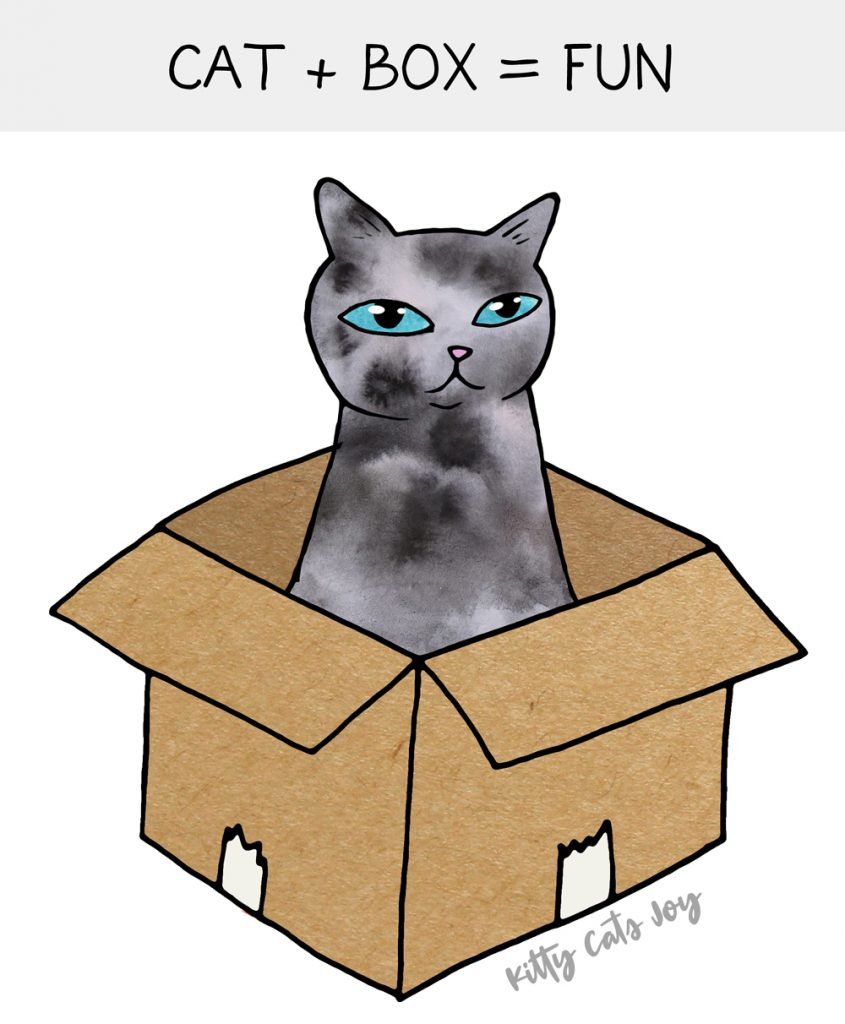 Cardboard Box Fun - DIY Games for Cats