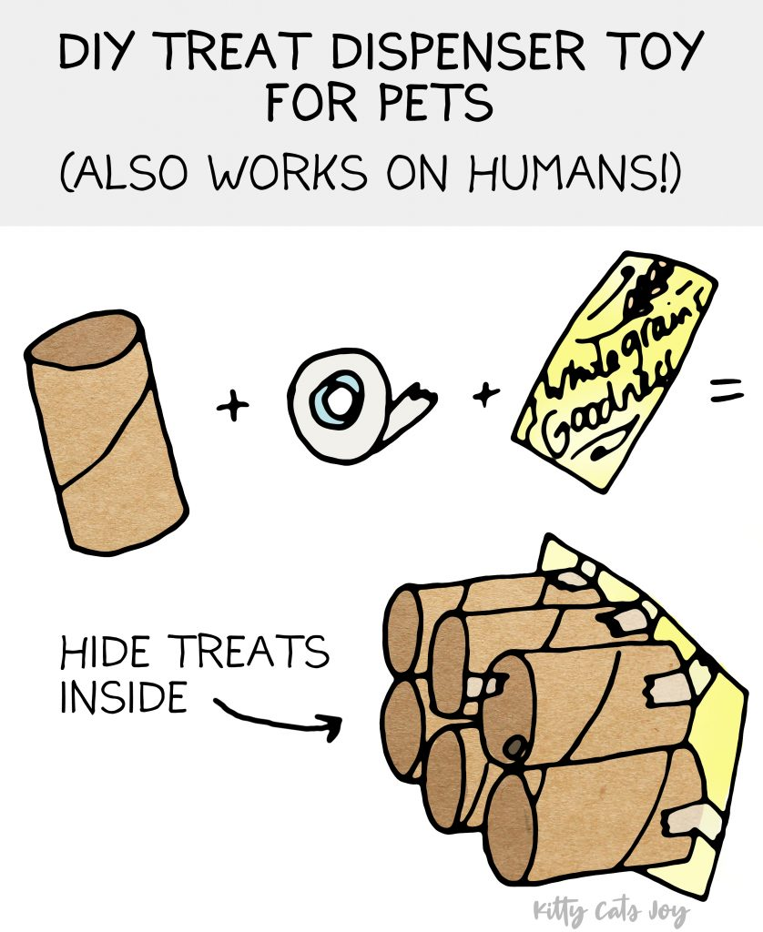 Homemade Treat Dispenser - DIY Games for Cats
