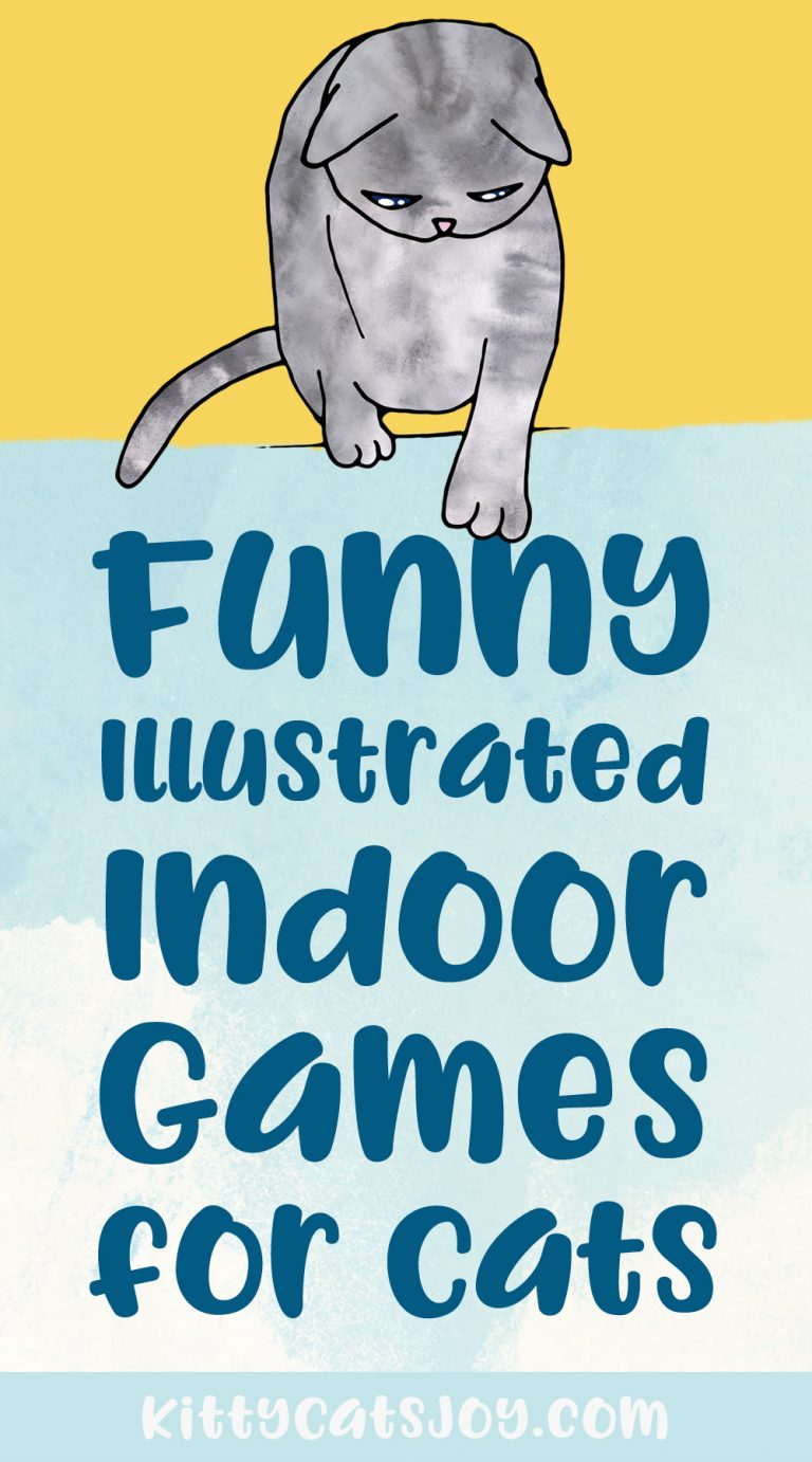 Funny Illustrations of Indoor Games For Cats