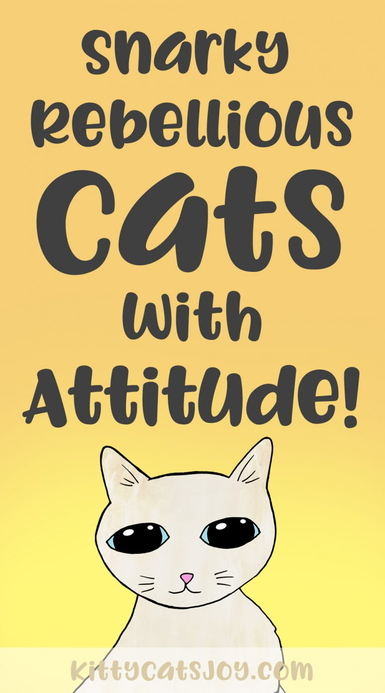 Snarky Rebellious Cats With Attitude comic art