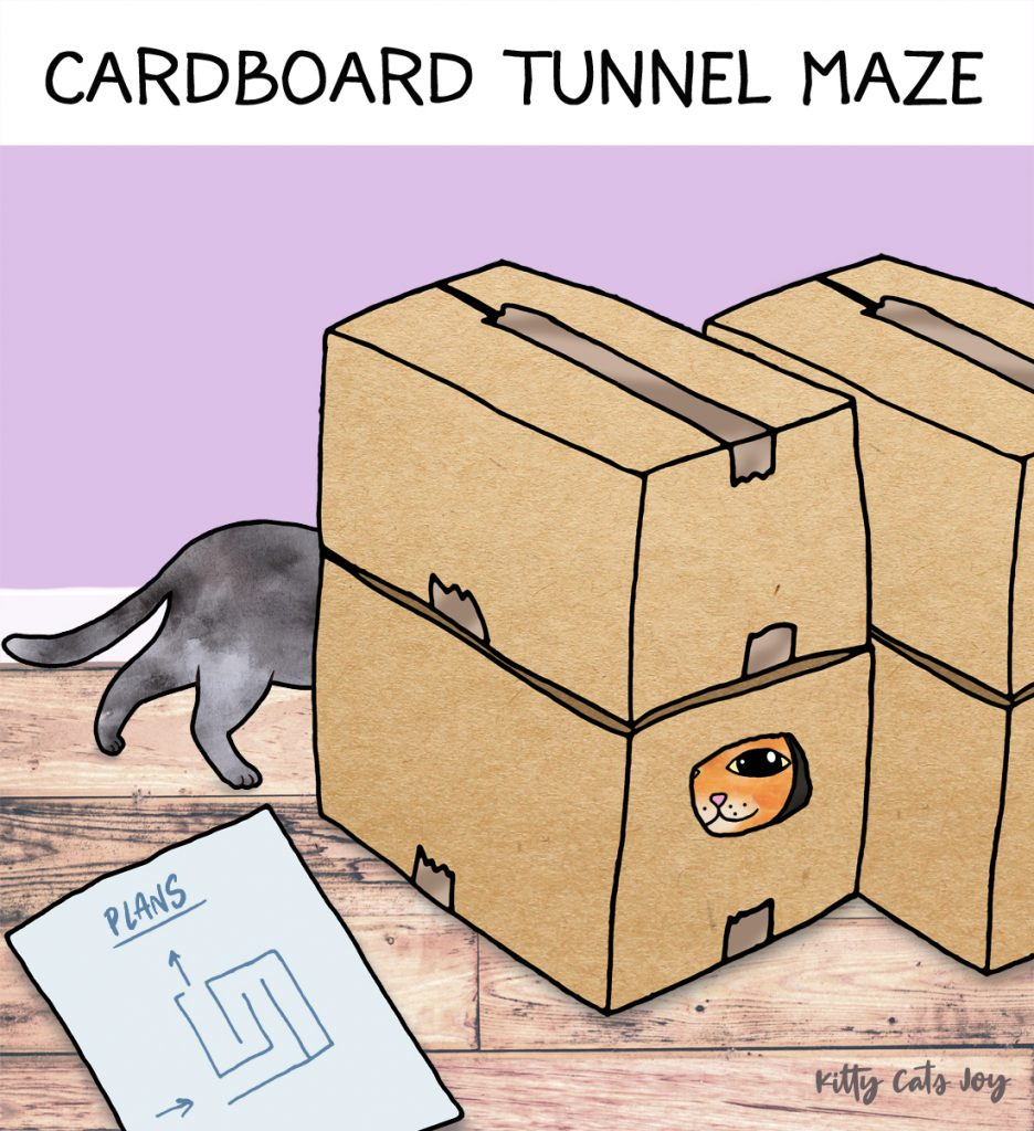 Tunnel Maze - DIY Games for Cats