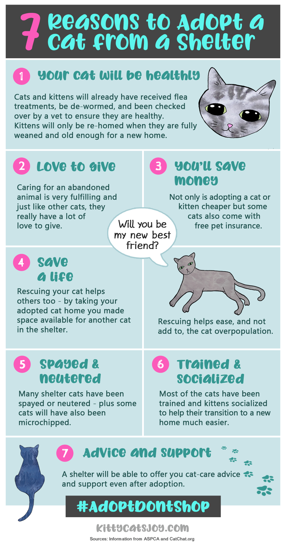 Adopt Dont Shop Shelter Cats Infographic