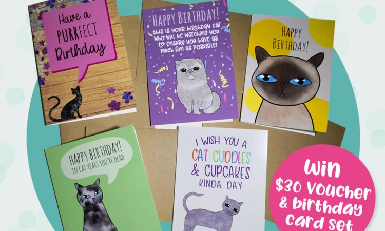 Kitty Cats Joy Cat Birthday Cards Giveaway