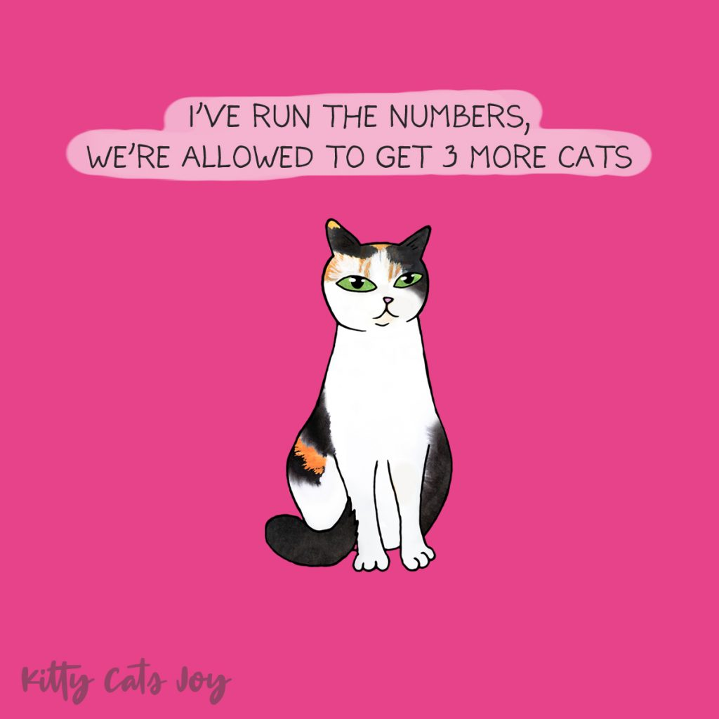 Funny Cat Quote - More Cats