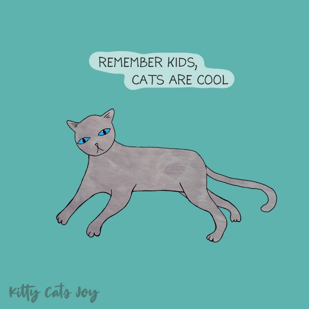 Funny Cat Quote -Cats Are Cool!