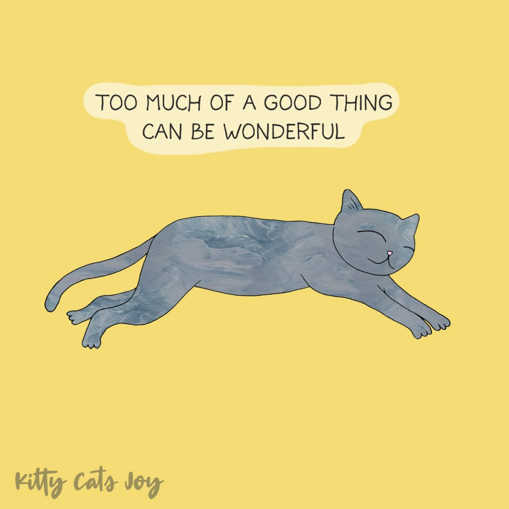 Funny Cat Quotes - Good Things