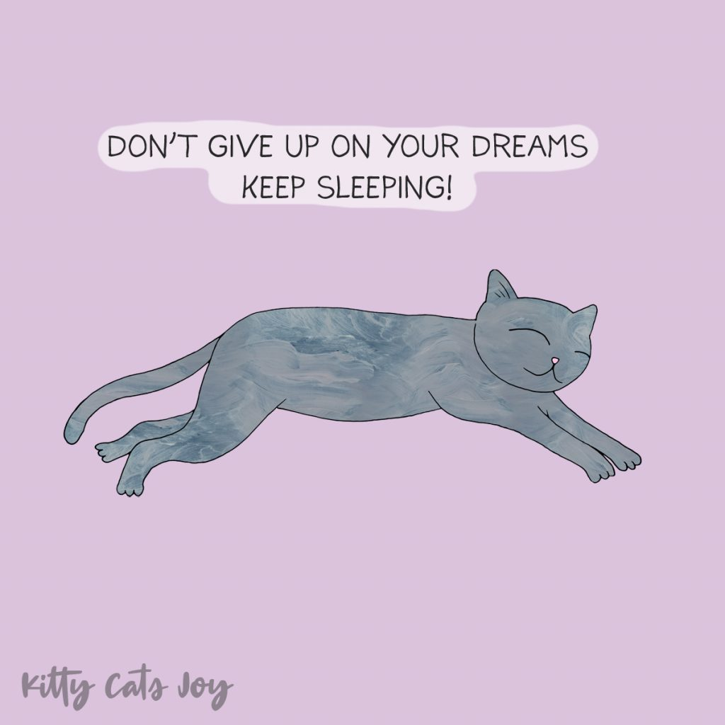 Funny Cat Quote - Keep Dreaming